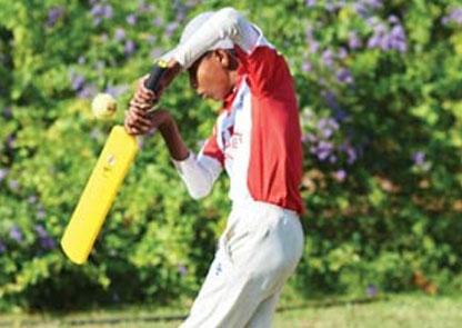 Life through Cricket