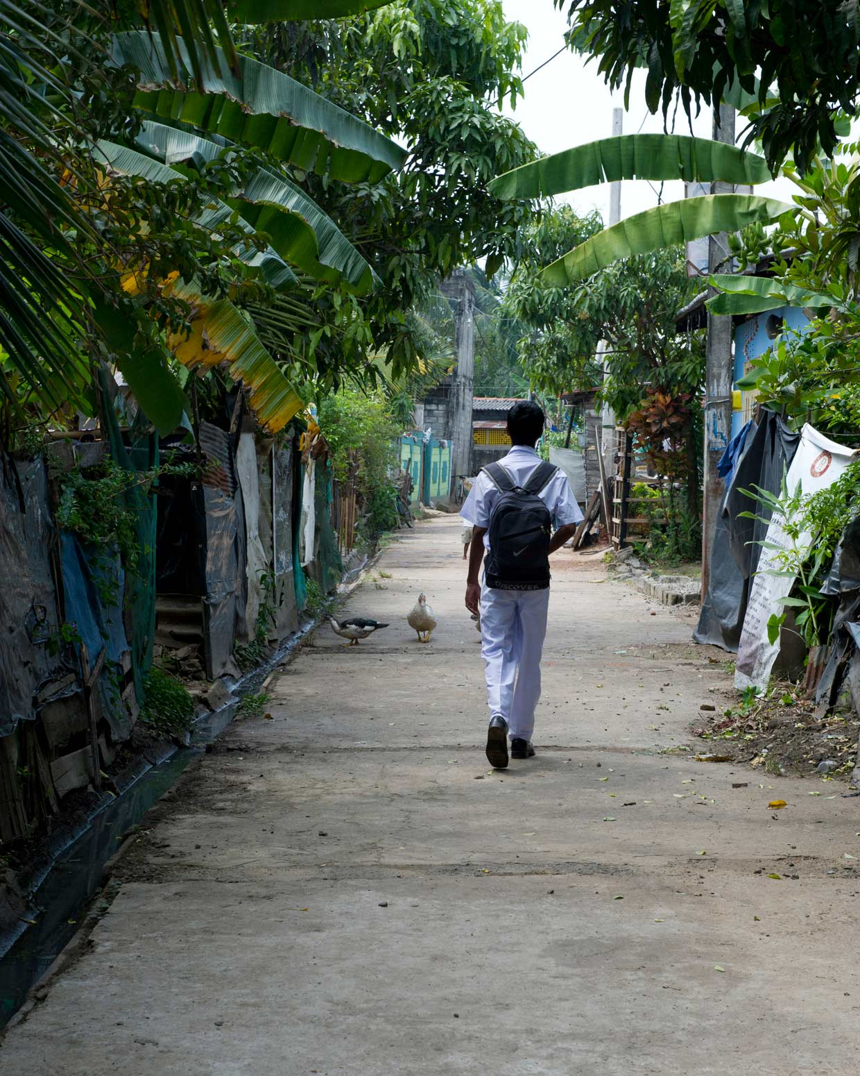 Away from the poverty and deprivation of his natural surroundings, a MJF Kid walks to school with his head held high! The MJF Kids Programme supports promising young students from marginalised communities achieve their potential since 2006.
