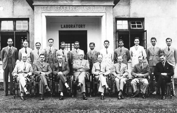 Tea Research Institute - TRI established