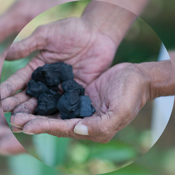 Under the guidance of Dilmah Conservation, Dilmah's tea estates begin applying Biochar into soil. Biochar is a soil enhancer produced using organic biomass, in this case, waste tea.