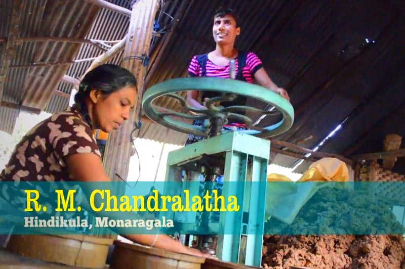 Changing Lives - R. M. Chandralatha